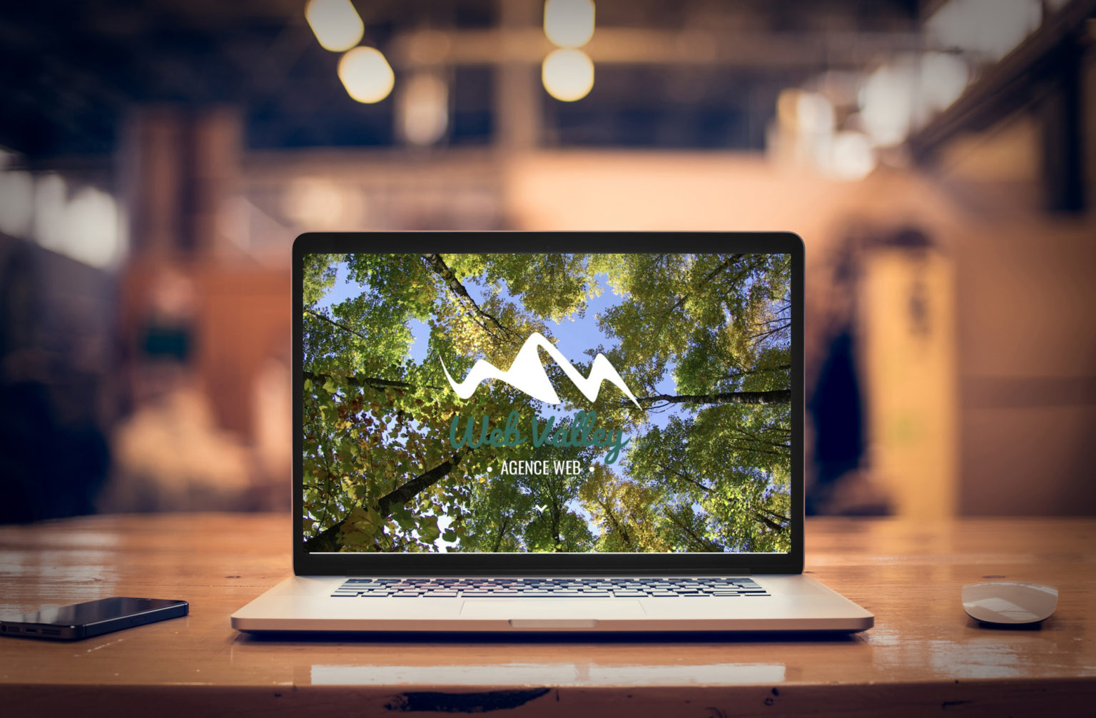 agence Marketing Web Valley
